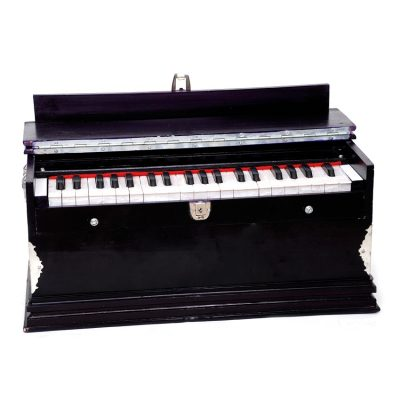 harmonium-learner-vadya.in
