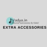buy-music-instruments-accessories-online-music-store-divya-vadya-delhi-india